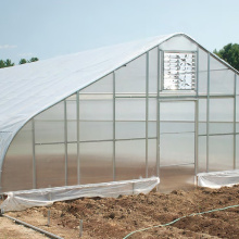 Popular Design for Greenhouse Film Gothic Sing Span  Greenhouse for Vegetables Flowers supply to Saint Lucia Exporter