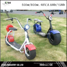 Hot Sale Scooter électrique Coco City 800W, 48V, 8.8ah avec 2 roues pour adultes