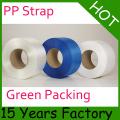 Correia de embalagem / Correia composta de plástico / correia para animais de estimação / correia de embalagem PP