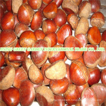 Fresh New Crop Tasty Chestnut