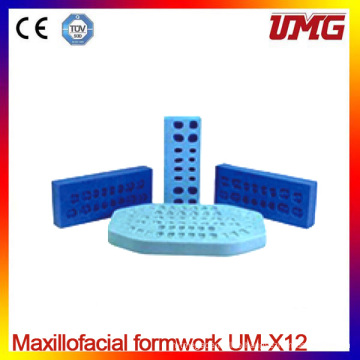 Um-X12 Removable Polyster Dental Teeth Model