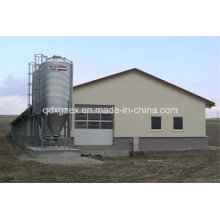 Chicken Farm/Layer House/Egg Chicken House (SS-700)