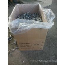 Prego de telhado galvanizado 2.5 ′ ′ para construção
