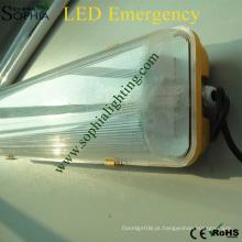 IP65 4ft Twin Tubos de luz de emergência LED