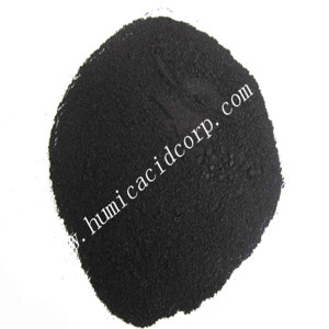 느린 방출 갈탄 Humic Acid Granule Powder