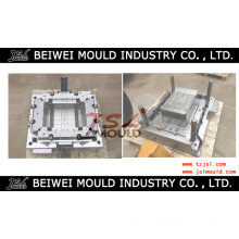 Plastic Injection Fruit Crate Mould