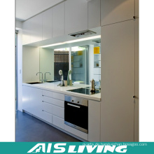 Budget Küche Schrank Möbel für Wohnung (AIS-K059)
