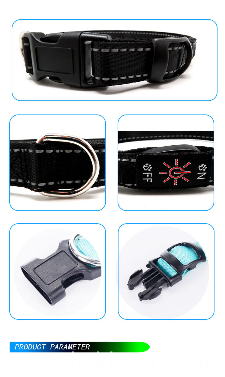 Light Up Dog Collars And Leashes