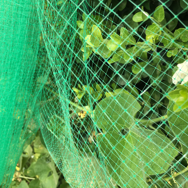plastic anti bird netting