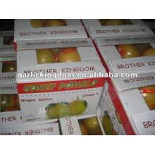 Pomelo de Shaddock de frutas frescas