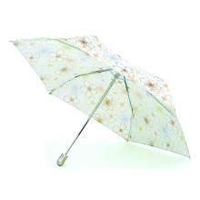 Kompakter Mini Auto Open & Close Regenschirm