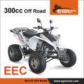 300cc ЕЭС квадроцикл спортивный квадроцикл