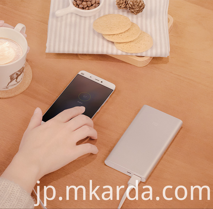 Li-polymer Power bank