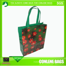 Azo Free, Low Cadmium Fashion PVC Bag (KLY-PVC-0005)