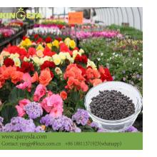 flowers use growth regulator biochar npk fertilizer