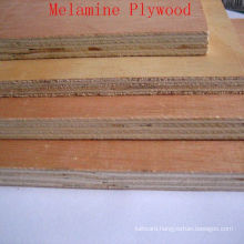 Okoume Wood Veneer of Cheap Prices