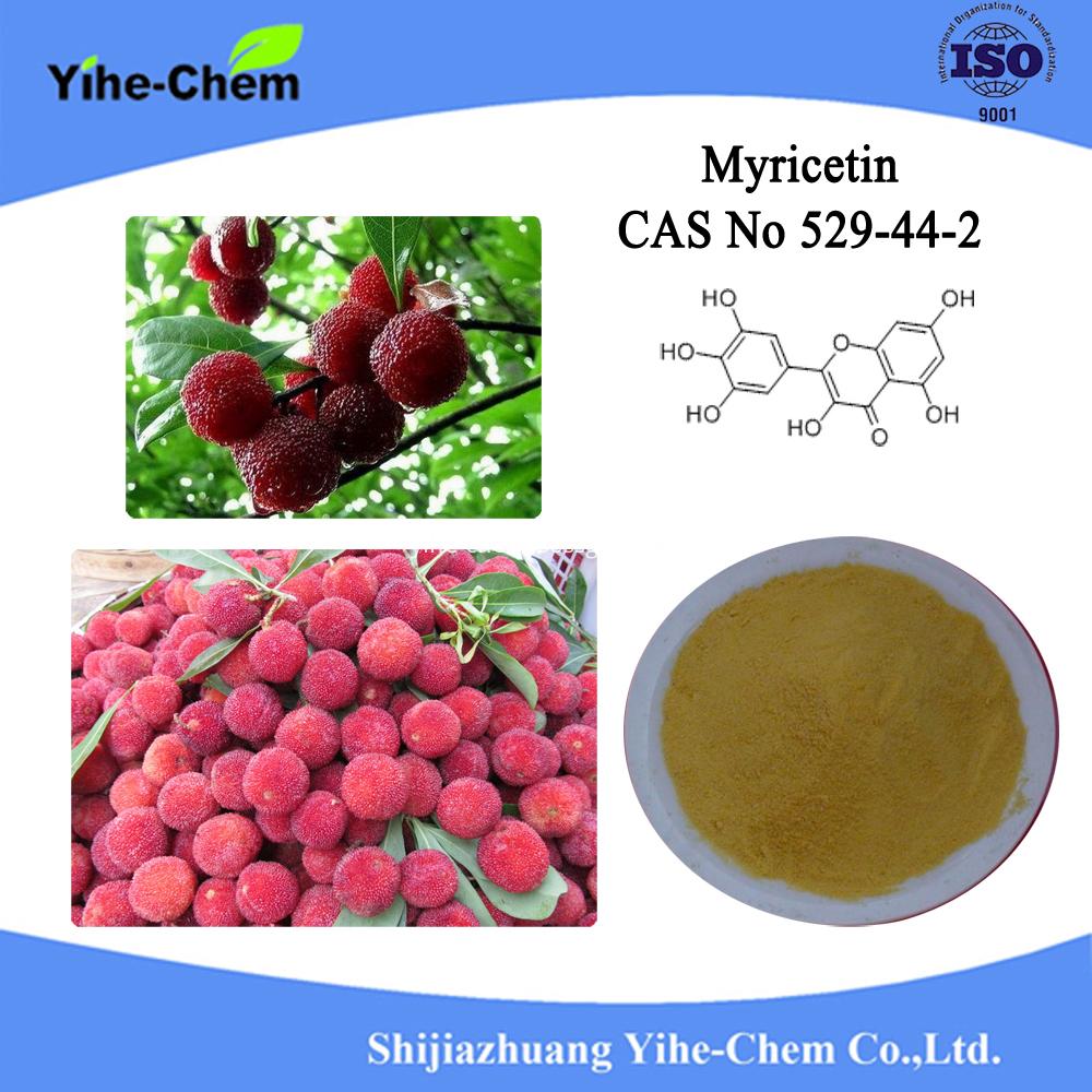 Myricetin2