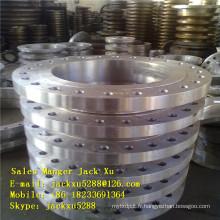 bride / coude / tee / réducteur Forgé en acier au carbone ANSI B16.5 aveugles brides