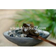 Fabricante de fungos negros vegetal seco Exportador
