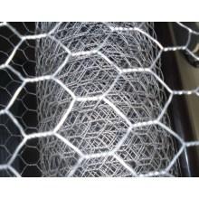 Hot Dipped Galvanisiertes Hexagonal Wire Mesh Chicken Net