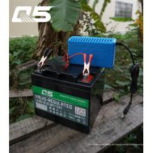 12V4A Batería de ácido de plomo Trickle automática Cargador de batería de almacenamiento de cargador