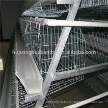 Certificado Soncap usado jaulas de la jaula de la gallina para la capa de la capa de la venta