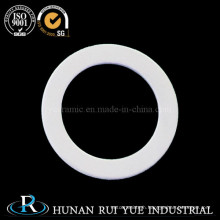 Pyrolytic Boron Nitride Ceramic Ring for Electrical Insulator