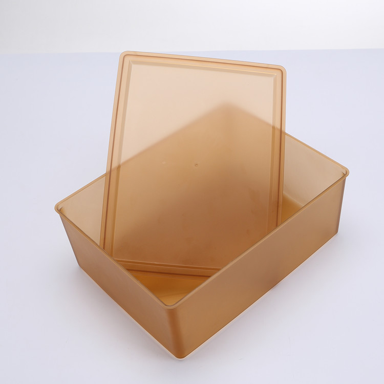 Hot Selling Plastic Bra Box With Lid