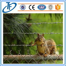 Stainless Low Carbon Bobbed Wire