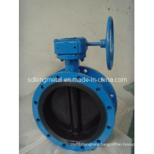 Rubber Seat Worm-Drive Flanged Butterfly Valve