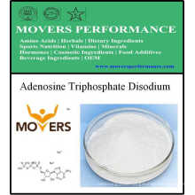 Nutrition Supplement - Adenosine Triphosphate Disodium (ATP)