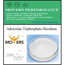 Nutrition Supplement - Adenosine Triphosphate Disodium (ATP)