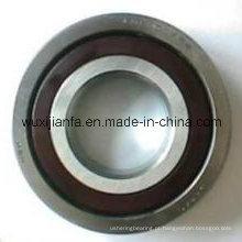 Rolamento de rolo de nylon retentor 6306 Tn9/C3 transportadora para máquina de mineração