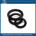 DIN 9250 S/Vs Safety Lock Washer
