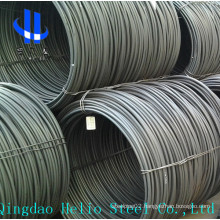 SAE1008 Hot Rolled Steel Wire Rod