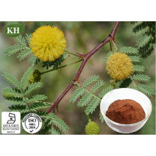 Acacia Catechu Extract Is Derived From Heartwood of Acacia Catechu