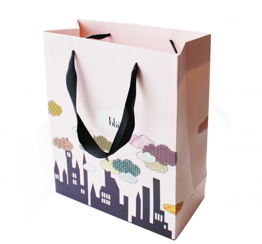 Shopping Paper Bag4