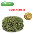 Natural plant Gynostemma Extract