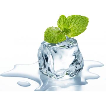China for Natural Extracts Menthol export to Egypt Manufacturer
