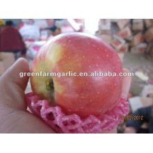 2012 Fuji Apple de China