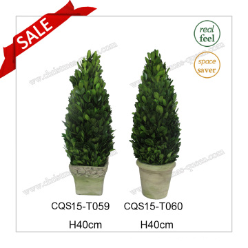 H40cm Grass Plant Type and Natural Leaf Boxwood Flower