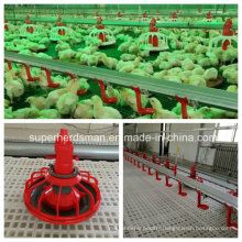 Full Set Automatic Poultry House Equipment for Broiler Production