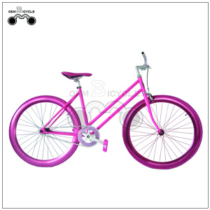 700c oembicycle women's style fixed gear bike