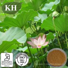 Extrait de feuille de lotus: Nuciferine 2% par HPLC; 10: 1
