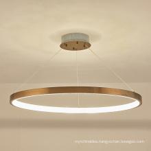 Modern acrylic Luxury Creative Hanging Lamp Chandelier Pendant Light