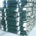 Pintado de verde Studded T Post para o mercado americano
