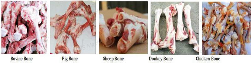 bone crusher18