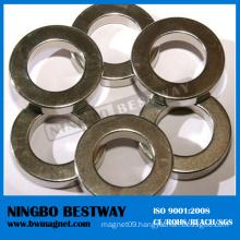 Radial Ring Neodymium Magnets Manufacturer