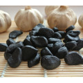 Peeled Black Garlic Sale