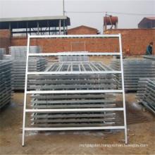 Dairy Cattle Farms Steel Tube Cattle Headlock Fence Panels